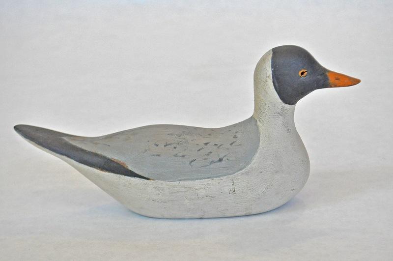 45. Small Sitting Gull 2_460_0093FA.jpg