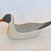 46. Small Sitting Gull 1_460_0093FA.jpg