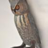14. Small Gray Horned Owl Orange Eyes 2 352_0071FA.jpg