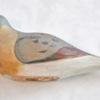 36. Folk Art Dove 2 436 0091FA.jpg