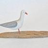10. Small Standing Gull on driftwood 2.jpg