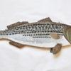19. Lg Striped Bass 4 399 0019FA.jpg