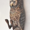 19. Small Speckled Owl - Attached Yellow Beak 3 418_0063FA.jpg