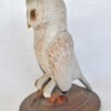 6. Med White Owl on Stand2 379_0011FA.jpg