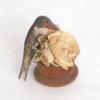 Hummingbird1_2.jpg