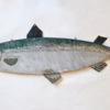 20. Flat Lg Salmon 3 388_0018FA.jpg